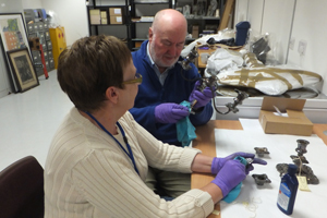 Volunteers cleaning and documenting collections