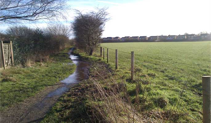 Standish Mineral Line - a waterlogged footpath through the fields